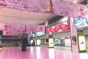 全国各地で桜が満開! 桜で埋め尽くすラッピング広告