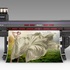 UV硬化インク搭載 プリント&カット対応IJP「UCJV300-160」「UCJV150-160」