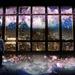〈2018.2.16〉東京タワーで夜景×桜の演出がスタート