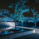〈2018.5.15〉LEDフルカラー投光器「ダイナセルファー」を発売