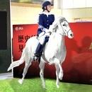 〈2018.5.22〉超リアル! JRA監修「馬ロボ」が駅や街に出没!!