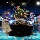 〈2018.6.20〉夏到来! 新感覚金魚展示「WOW! 金魚あそび」開催