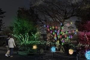 〈2019.1.28〉「京都・梅小路みんながつながるプロジェクト」で賑わいづくり  ライトアップイベント「京都・冬の光宴2019」開催
