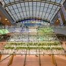 宮崎ブーゲンビリア空港に巨大な「大根やぐら」が登場