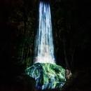 〈2020.6.29〉チームラボ恒例の森のアート展「チームラボ かみさまがすまう森」今年も九州・武雄温泉の御船山楽園で開催決定。2020年夏オープン