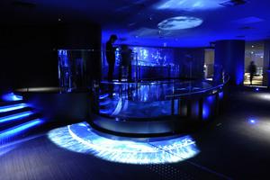 〈2021.1.7〉約500匹のクラゲが漂う水槽で神秘的な空間演出。すみだ水族館の冬企画「月とクラゲ」。